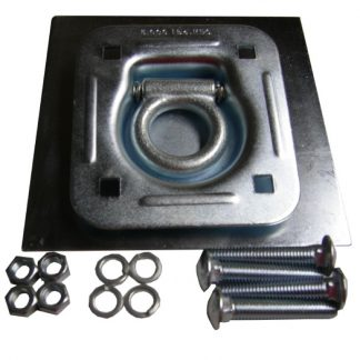 Heavy-Duty D-ring and backing plate